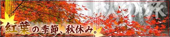 秋の格安ツアー特集【紅葉の季節、秋休み!秋の旅】